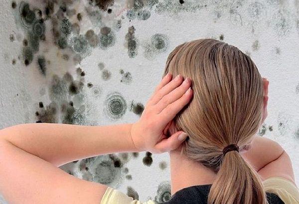Шкода для здоров'я дітей і дорослих від підвищеної вологості в кімнаті